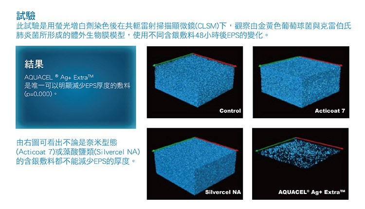 Winning the battle to disrupt biofilm - 1 (Mandarin for website)
